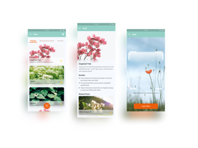 Plant scanner app to help y...